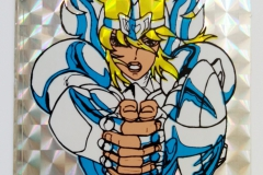 星矢Ellon-系列-30-scaled