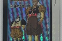 龍珠 本彈 系列 9 (1991)