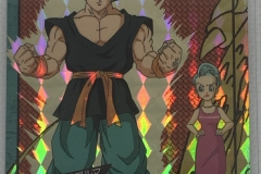 龍珠 激鬥 系列 15 (1995)